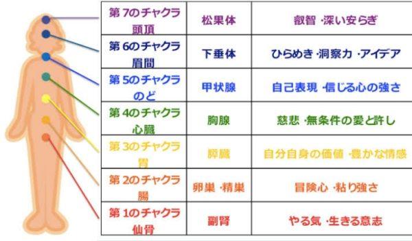 8月6日(金)は丸田先生のヨガ